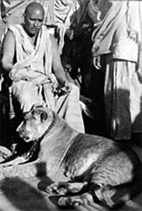 Krishnanada